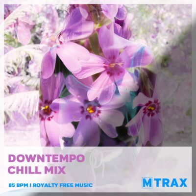 Downtempo Chill Mix - MTrax Fitness Music